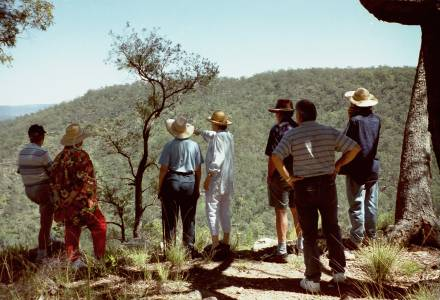 Biodiversity Recovery Plan for Gatton and Laidley Shires, South-East Queensland